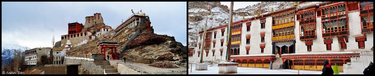 Thiksay and Hemis Monasteries