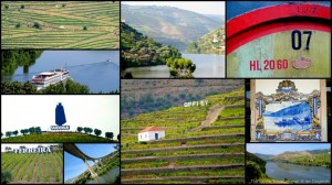 Douro Valley collage