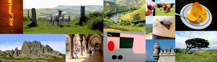 #frifoto collage