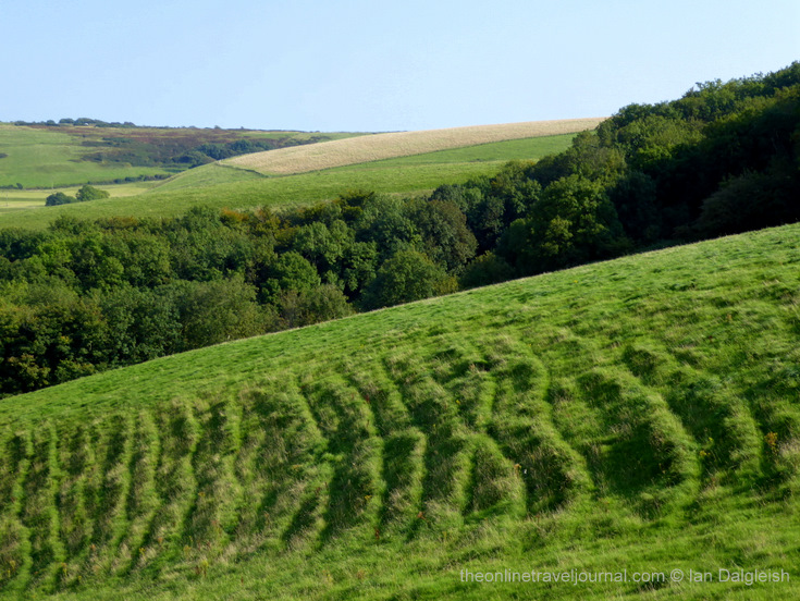 Folded downs with soil creep ridges, Littlebredy CP, Dorset