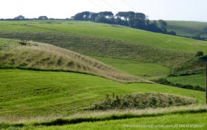 Shapes and contours in the land - looking west from Toppart's Dairy, Littlebredy PC, Dorset