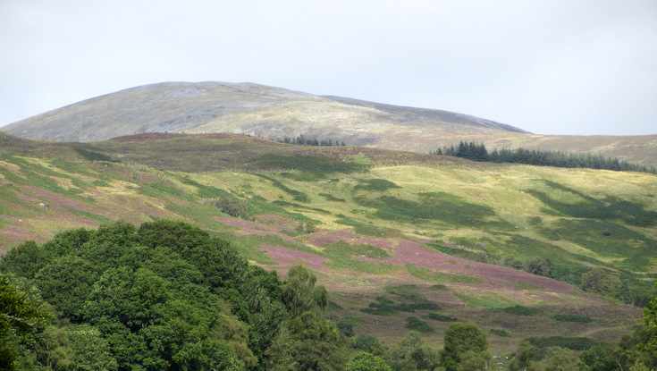 View on Great Glen Walk